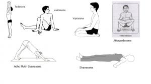 postnatal exercises and yoga postures